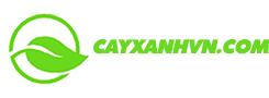 Cây xanh chất lượng cao Việt Nam